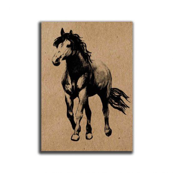 מיני פוסטר A5 סוס